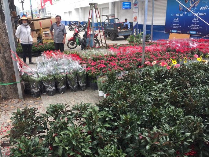 Đường phố TP HCM tràn ngập hoa Tết bán sớm - Ảnh 3.