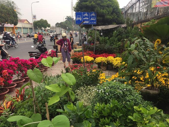 Đường phố TP HCM tràn ngập hoa Tết bán sớm - Ảnh 4.