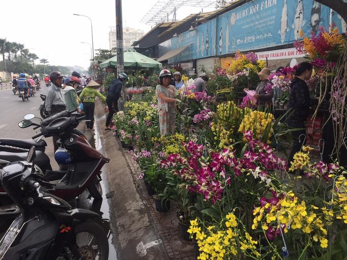 Đường phố TP HCM tràn ngập hoa Tết bán sớm - Ảnh 5.