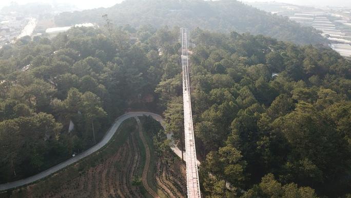 Khu du lịch Thung lũng Tình yêu chặt phá rừng thông, xây lụi cầu đáy kính không phép - Ảnh 5.