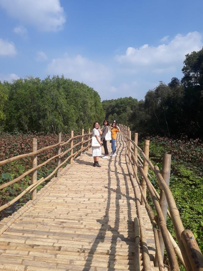 Ngỡ ngàng chiếc cầu tre dài nhất Việt Nam nằm giữa rừng tràm - Ảnh 2.