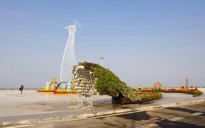 Ngỡ ngàng sắc Xuân tại khu lấn biển lớn nhất miền Tây - Ảnh 5.