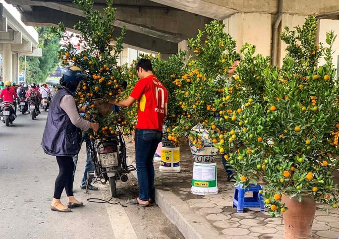 Cận cảnh nhà ga đường sắt Cát Linh - Hà Đông thành chợ cây cảnh - Ảnh 8.