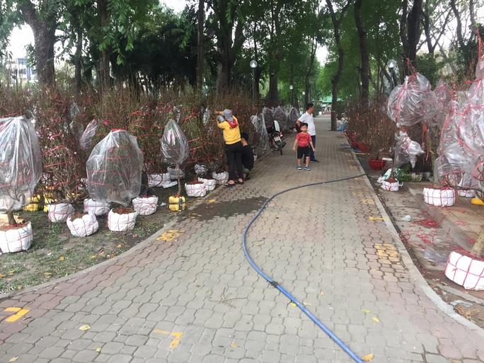 Chợ hoa Tết ở TP HCM đồng loạt mở cửa sáng 23 tháng Chạp - Ảnh 4.