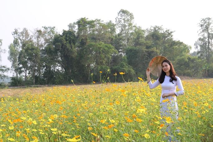 Về Cao Lãnh ngắm cánh đồng hoa rộng hơn 20.000 m2 - Ảnh 3.