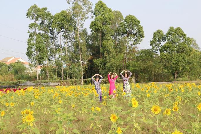 Về Cao Lãnh ngắm cánh đồng hoa rộng hơn 20.000 m2 - Ảnh 5.