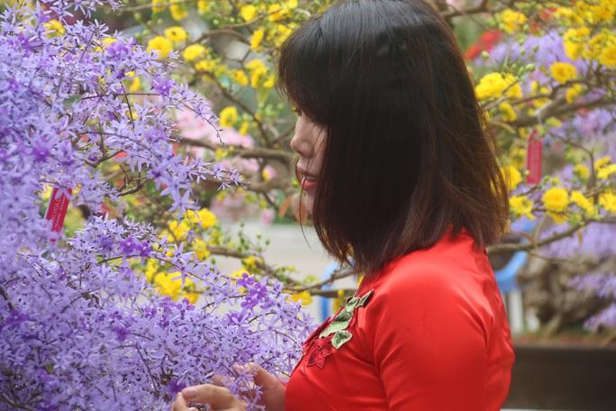 Ngắm sắc xuân về trên phố biển Nha Trang - Ảnh 15.