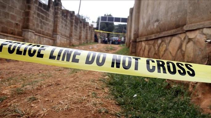 Lựu đạn phát nổ trong đám cưới, gần 50 người thương vong - Ảnh 1.