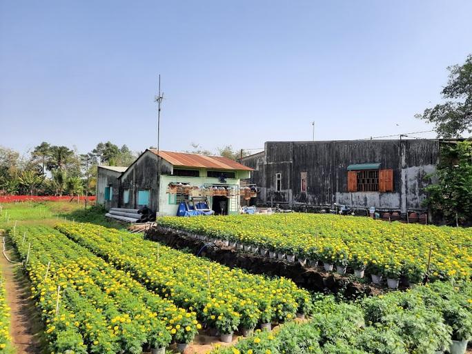 Làng hoa lớn nhất Đồng Nai rộn rã ngày cận Tết - Ảnh 4.