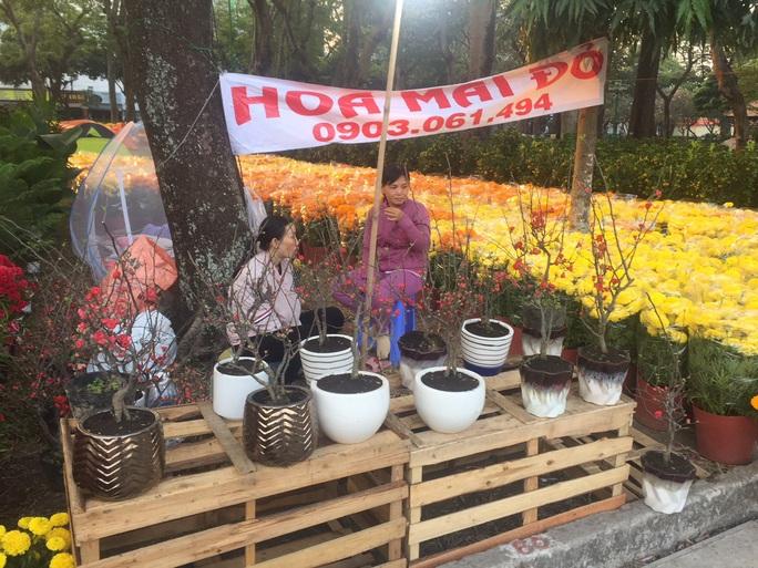 Ngỡ ngàng với nhiều loại hoa kiểng, trái độc lạ dịp Tết - Ảnh 2.