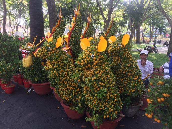 Ngỡ ngàng với nhiều loại hoa kiểng, trái độc lạ dịp Tết - Ảnh 11.