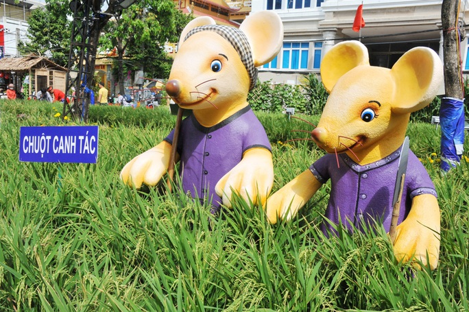 Ngắm những chú chuột làm nông dân ở đường hoa Xuân lớn nhất miền Tây - Ảnh 9.