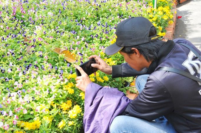 Ngắm những chú chuột làm nông dân ở đường hoa Xuân lớn nhất miền Tây - Ảnh 25.