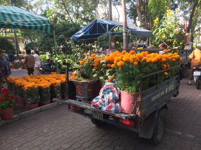 Chen nhau mua hoa giảm giá sáng 30 Tết, hàng chục gốc đào xứ Bắc bị bỏ lại ở chợ hoa - Ảnh 7.