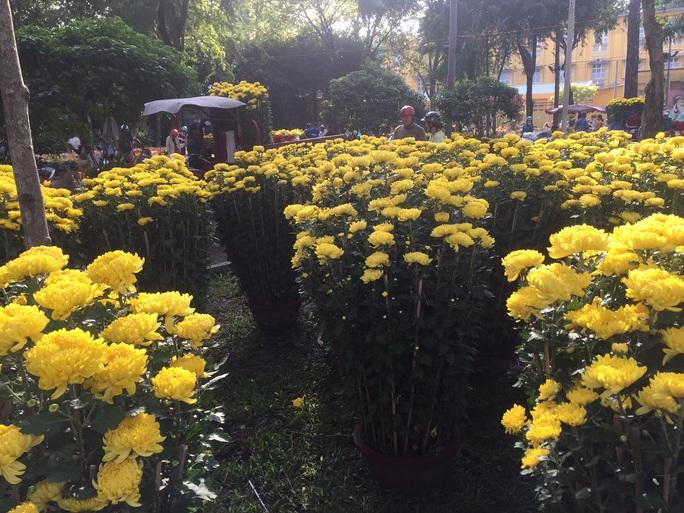 Chen nhau mua hoa giảm giá sáng 30 Tết, hàng chục gốc đào xứ Bắc bị bỏ lại ở chợ hoa - Ảnh 9.