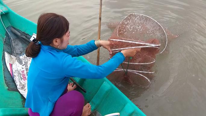 CLIP: Về Cà Mau xem nông dân bắt cá kèo ăn Tết  - Ảnh 5.