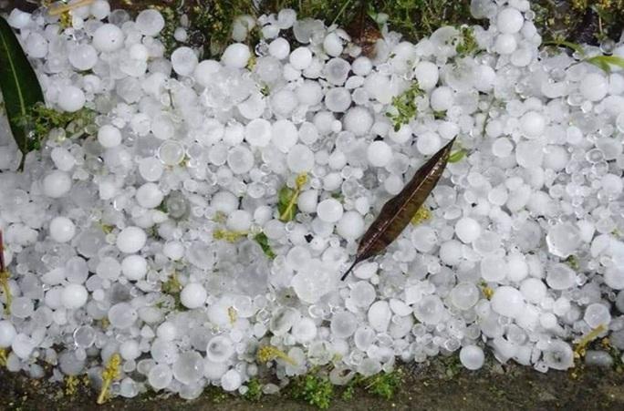 CLIP: Mưa đá rơi rào rào ngày mùng 1 Tết - Ảnh 4.
