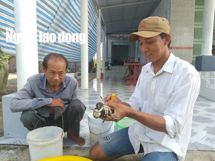 Lý do cua biển ngon nhất miền Tây trúng giá dịp Tết Canh Tý - Ảnh 10.