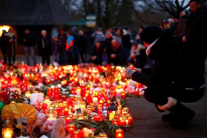 Vụ cháy sở thú Đức, thiêu chết bầy linh trưởng: Do đèn lồng Trung Quốc - Ảnh 1.
