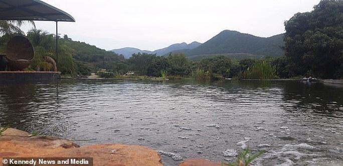 Nhện khổng lồ bắt cá vàng dưới hồ nước - Ảnh 4.