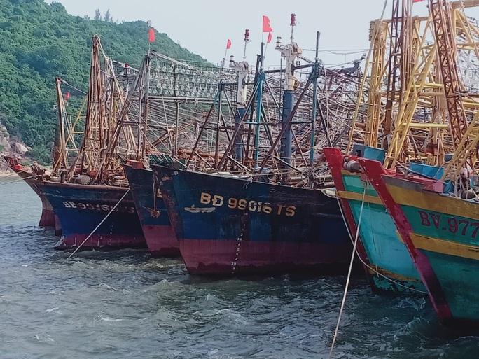Phó Chủ tịch tỉnh Bình Định khuyến khích ngư dân kiện bảo hiểm PJICO ra tòa - Ảnh 3.
