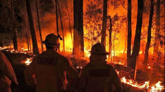 Gần 50 độ C, Úc trở thành nơi nóng nhất Trái đất  - Ảnh 2.