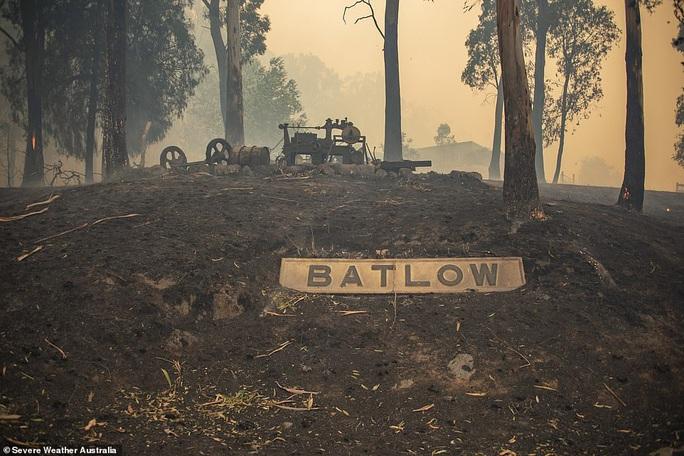 Cháy rừng Úc: Hàng ngàn con kangaroo, koala nằm chết la liệt bên đường - Ảnh 1.