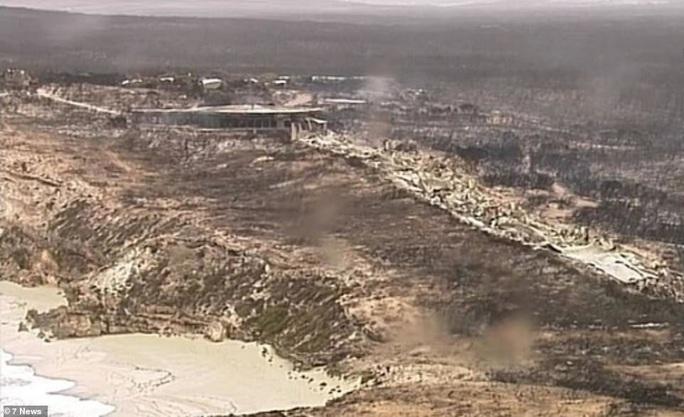 Cháy rừng Úc: Hàng ngàn con kangaroo, koala nằm chết la liệt bên đường - Ảnh 8.