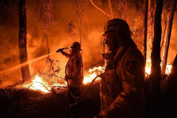 Thần sấm Chris Hemsworth quyên 23 tỉ đồng khắc phục cháy rừng ở Úc - Ảnh 5.