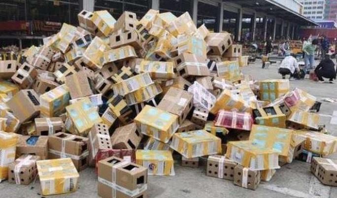 Thảm cảnh của 5.000 thú nuôi chết trong thùng hàng chuyển phát tại Trung Quốc - Ảnh 1.