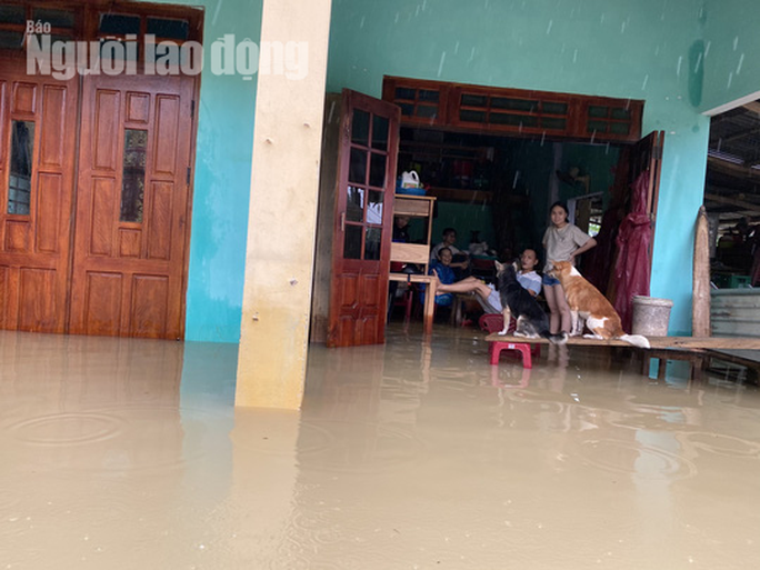 Đà Nẵng: Mưa to gió lớn gây ngập nặng, người dân chèo ghe đi tiếp tế lương thực khắp xóm - Ảnh 13.