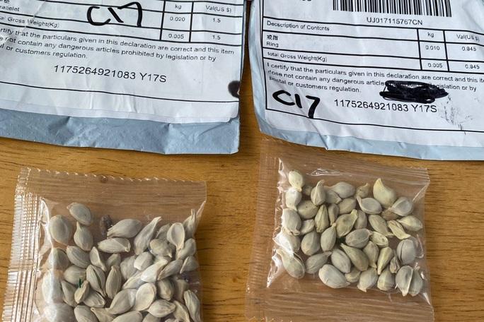 Chiêu trò đằng sau hạt giống bí ẩn gieo rắc hoang mang ở Mỹ - Ảnh 1.