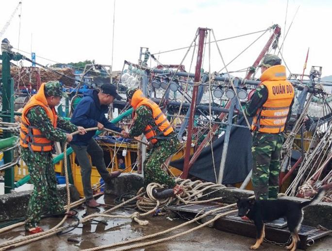 Ảnh hưởng bão số 7, Quảng Ninh cấm cầu Bãi Cháy một chiều - Ảnh 2.