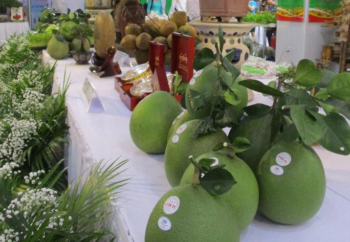 Chi Lê thông báo mở cửa thị trường cho quả bưởi tươi Việt Nam - Ảnh 2.