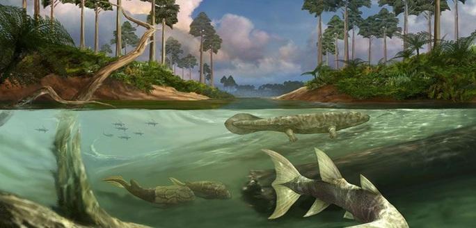 Tác động ngoài hành tinh từng khiến loài cá Trái Đất mọc chân, biến hình - Ảnh 1.