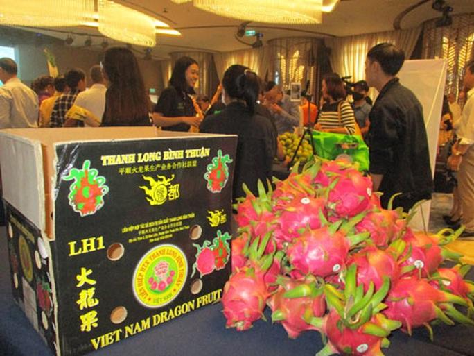Nâng chất lượng rau quả xuất sang Trung Quốc - Ảnh 1.