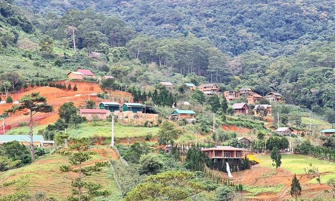 Làng biệt thự vắng chủ xây trái phép trên đất rừng Lâm Đồng - Ảnh 1.