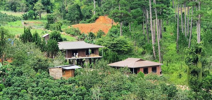 Làng biệt thự vắng chủ xây trái phép trên đất rừng Lâm Đồng - Ảnh 4.