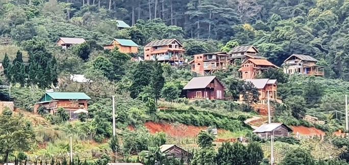 Làng biệt thự vắng chủ xây trái phép trên đất rừng Lâm Đồng - Ảnh 3.