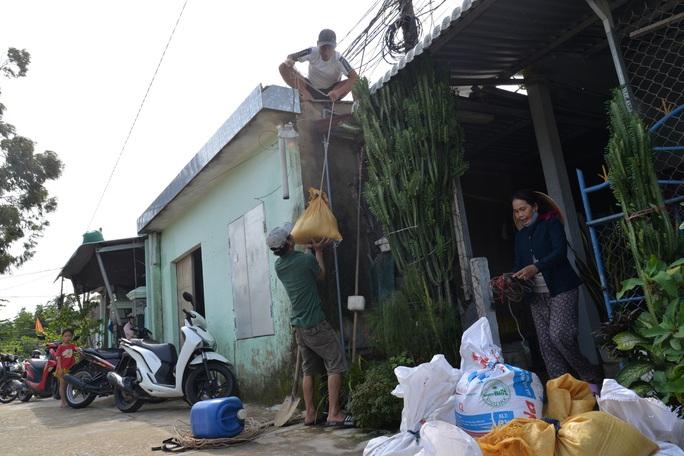 Quảng Ngãi: Đang di dời hàng chục ngàn người dân tránh bão số 9 - Ảnh 8.