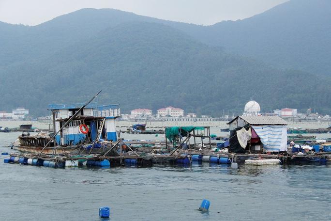 Đà Nẵng: Ra tối hậu thư di dời dân để tránh bão số 9 - Ảnh 6.