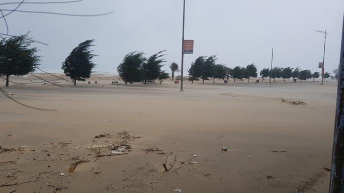 Bão số 9: Thừa Thiên - Huế có gió rất mạnh, cây đổ - Ảnh 3.