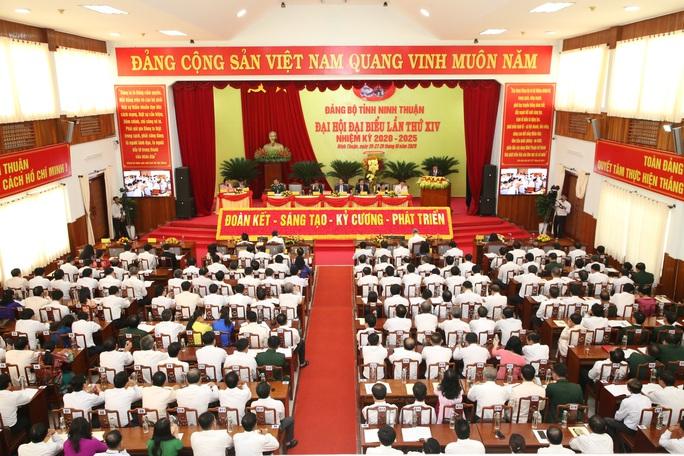 Ông Nguyễn Đức Thanh tái đắc cử chức Bí thư Tỉnh ủy Ninh Thuận - Ảnh 2.