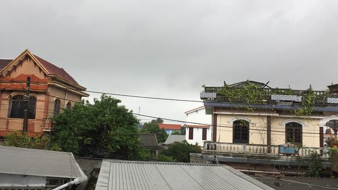 Bão số 9: Thừa Thiên - Huế có gió rất mạnh, cây đổ - Ảnh 5.