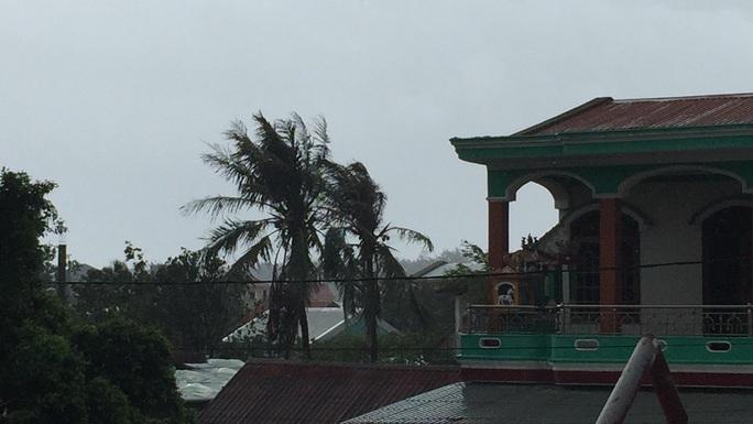 Bão số 9: Thừa Thiên - Huế có gió rất mạnh, cây đổ - Ảnh 6.