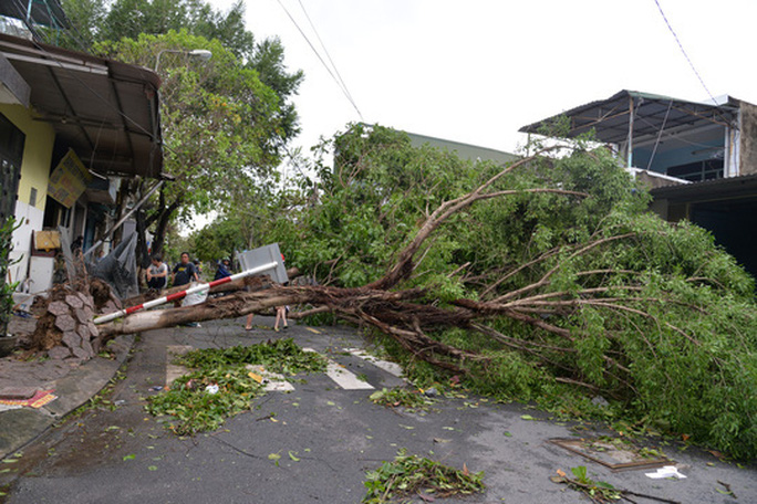 VIDEO: Quảng Ngãi tan hoang khi bão số 9 đi qua - Ảnh 12.