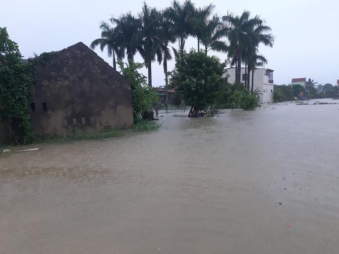 Mưa lớn, hàng ngàn nhà dân ở Nghệ An bị ngập sâu - Ảnh 14.