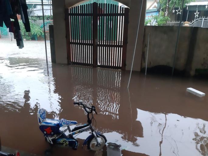 Mưa lớn, hàng ngàn nhà dân ở Nghệ An bị ngập sâu - Ảnh 6.