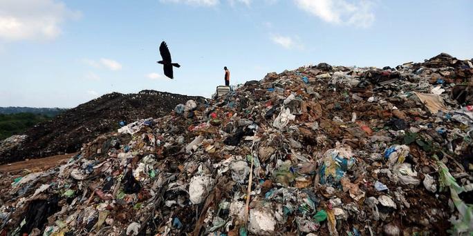 Sri Lanka trả lại rác chứa bộ phận cơ thể cho Anh - Ảnh 1.