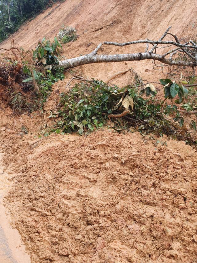 TP Đà Nẵng và Tỉnh Đắk Lắk cứu trợ người dân bão lụt miền Trung - Ảnh 4.